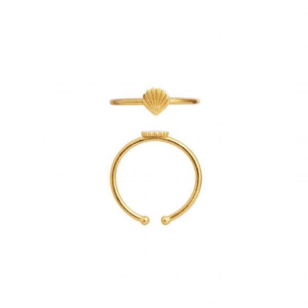 Petit Shell Ring Gold